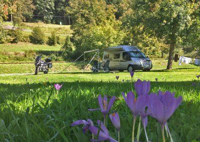 Au bord du gave d'Aspe, le camping vous acueille sur 80 emplacements délimités, ombrages et plats ainsi que deux bungalows et deux mini-chalets. Le camping est ouvert du 1 mai au 30 septembre.
